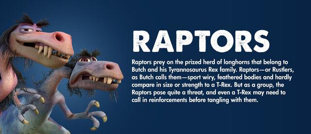 File:Raptor Information.JPG