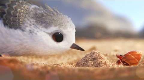 Piper Clip uit de Pixar Kortfilm voor Finding Dory Disney BE