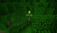 Bellsprout in-game