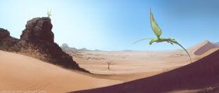 Flygon nel deserto