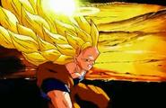 Goku 33