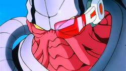 Caco close up.png