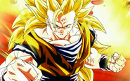Goku 29