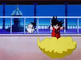 Goku na kinto