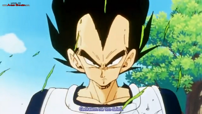 Dragon Ball, Dragon Ball Z, Dragon Ball GT & Dragon Ball Movies (57).png