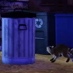 Szop pracz z The Sims 3 Zwierzaki