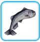 Salmon_(freeplay).png