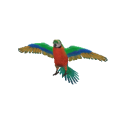 Catalina Macaw Transparent.png