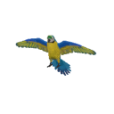 Blue Gold Macaw Transparent.png