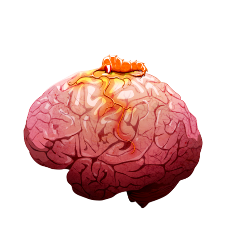 File:Brain 02 off@2x.png