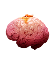 Brain 01 off@2x
