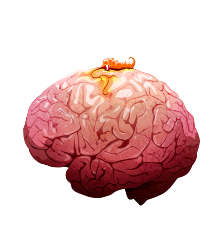File:Brain 01 off@2x.png