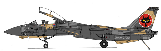 File:F14redux.png