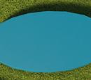 Oval 3 - Medium