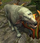 Umbrawolf2