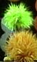 ChartreuseFurBall