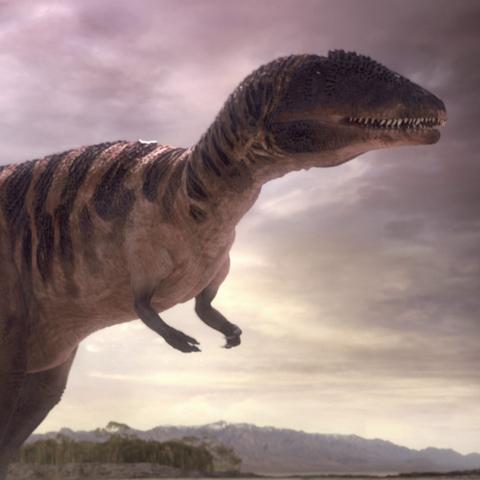 File:CarcharodontosaurusPortrait.png