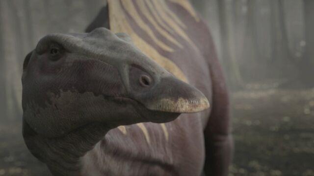 File:OuranosaurusMain.jpg