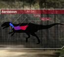 Aerosteon