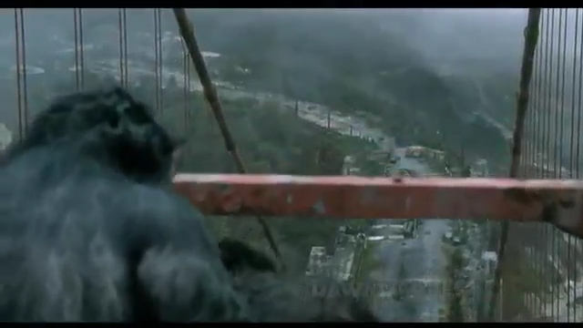 File:Apes back on the bridge.jpg