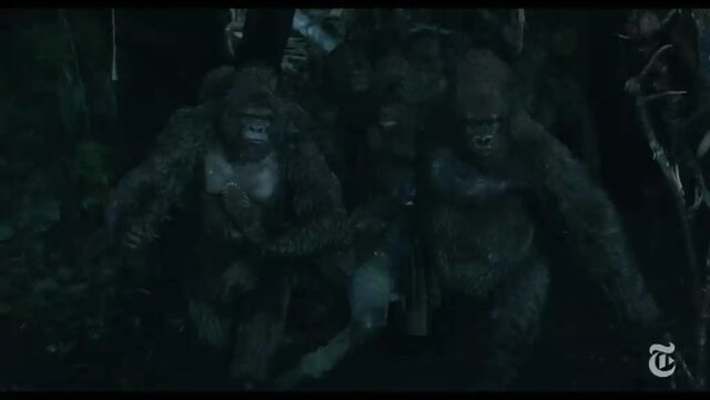 File:Stone and other apes carries Malcolm body.jpeg