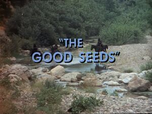 The Good Seeds