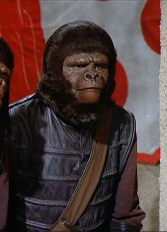 File:Tall police gorilla.jpg
