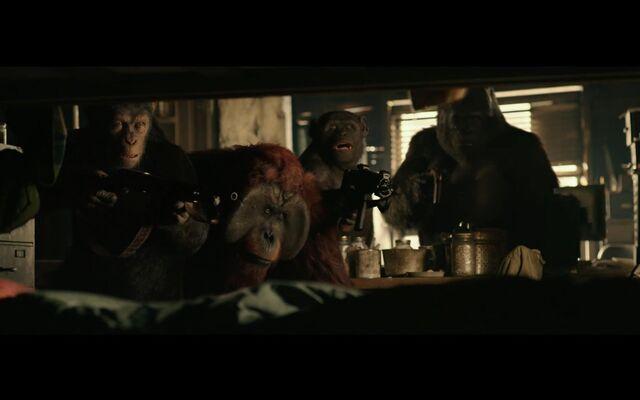 File:WPOTA Caesar, Maurice, Rocket and Luca.jpg