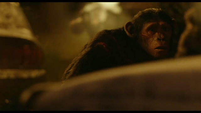 File:Blue-Eyes sees the similarity between apes and humans.png