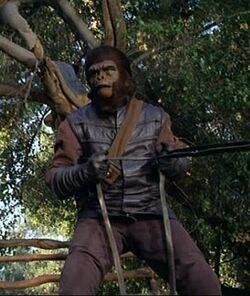 Gorilla driver