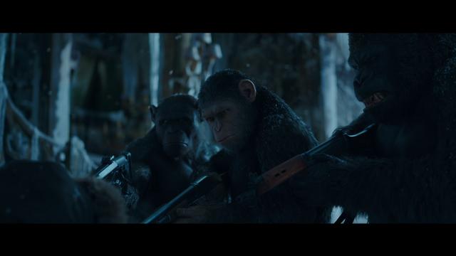 File:WPOTA Bad Ape raising his head.png