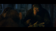 WPOTA Caesar asking Bad Ape if there are more Apes from the zoo
