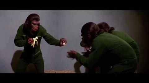 Conquest of the Planet of the Apes (1972) Caesar shares