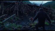 Ape Village 3