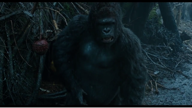 File:Unnamed Gorilla.png
