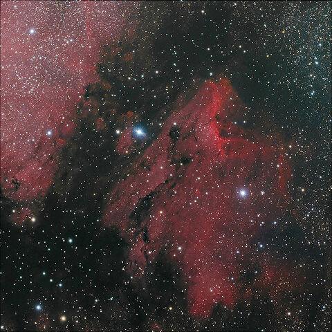 File:Pelican Nebula.jpg