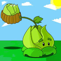 Cabbage-pult (on the lawn)