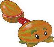 Autumn melon