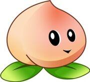 Heavenly Peach!