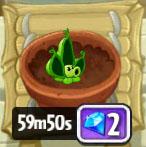 Planttimer