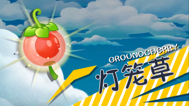 File:Groundcherry in Trailer.png