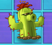 File:CactusNMT2.png