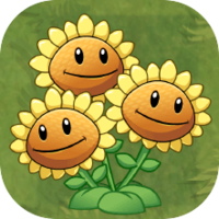 File:TripletSunflower.png