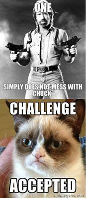 File:Chuck vs. Grumpy.jpg