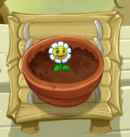 File:Growing Marigold PvZ2.png