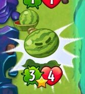 Melon-Pult Bounces And Died --(