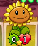 01Sunflower