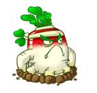 File:White Radish 2.png