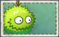 File:Small Chestnut Team Seed Packet.png