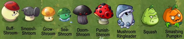 File:Mushroom Concepts.png